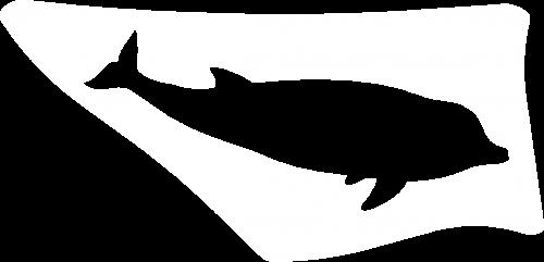dolfijnw+